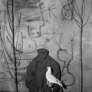 Headless, 2006
