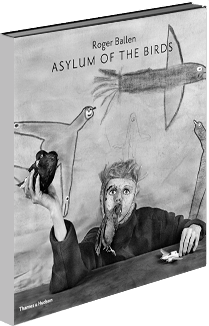 Asylum of the Birds book cover