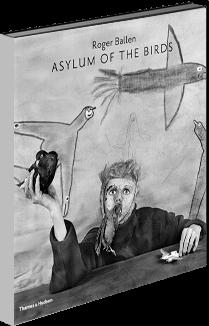 Asylum of the Birds book cover