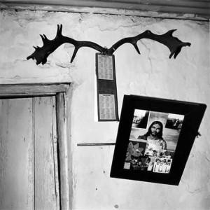 Wall, labourer's cottage, Carnarvon, 1984