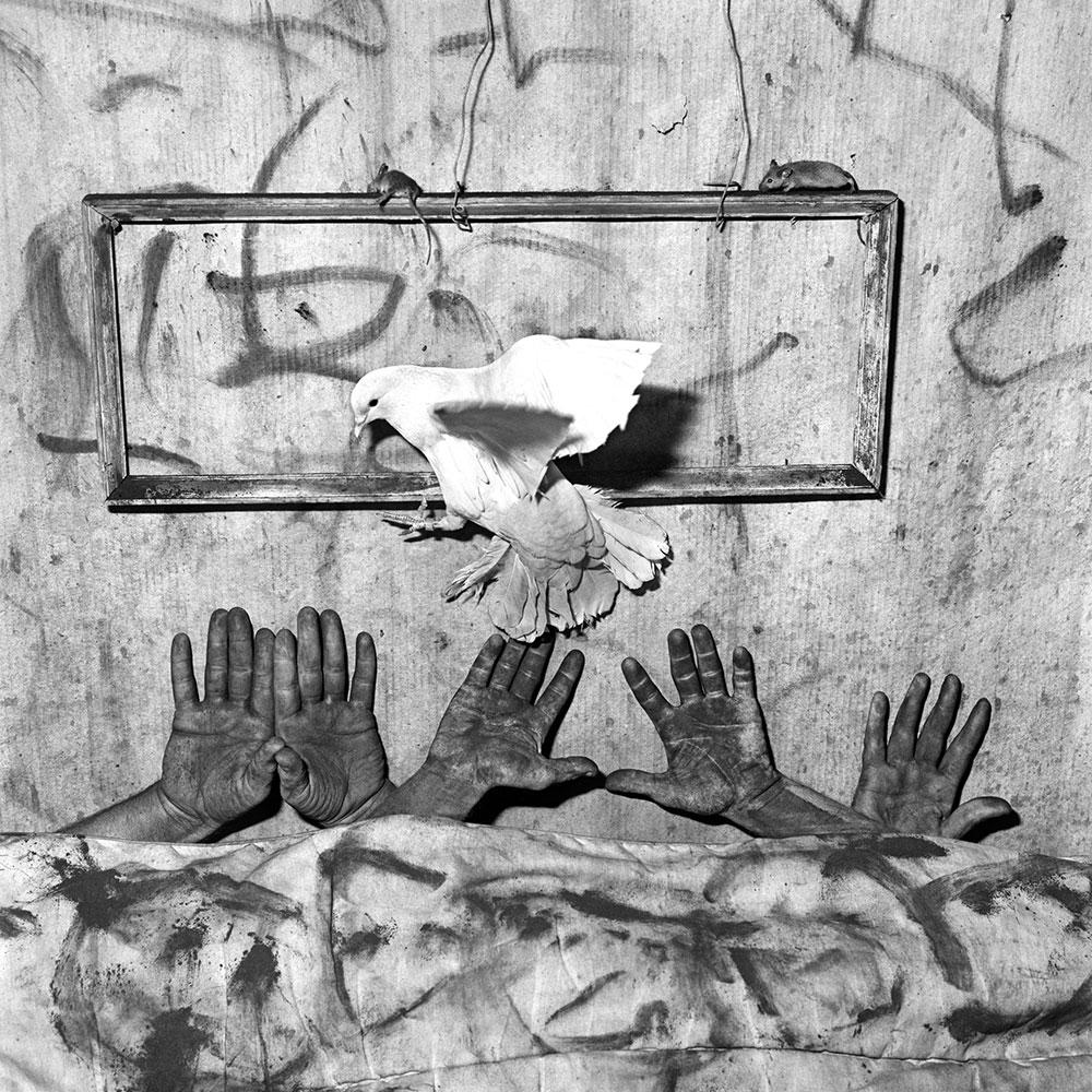 Five Hands, 2006