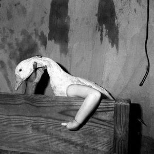 One Arm Goose, 2004